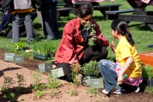 Michelle Obama gardening with an elementary school student. Photo courtesy of Whjte House Public Domain